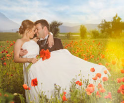 couple on a sunny day in the field of poppies