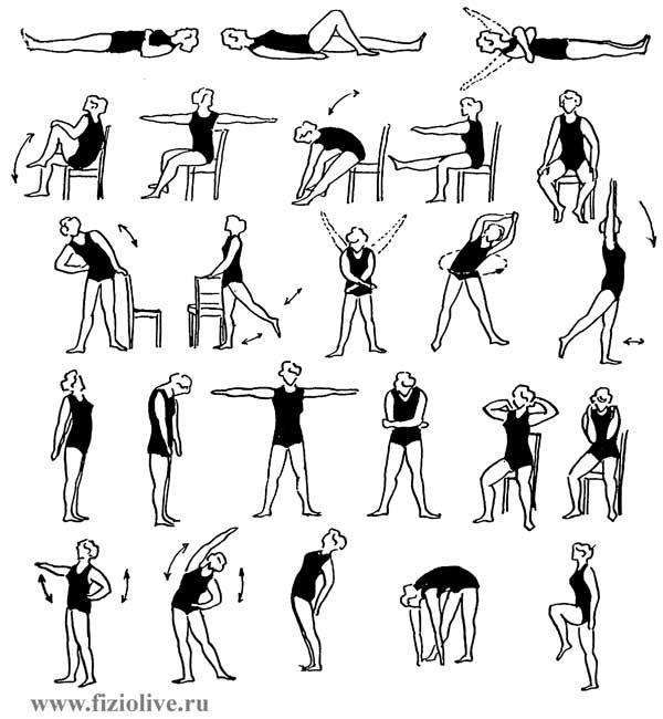 Лечебная физкультура при хроническом бронхите реферат 2051