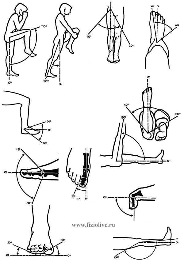 Измерение объема движения в суставах собой перелом тазобедренного сустава наиболее распространено повреждение шейки бедра пред